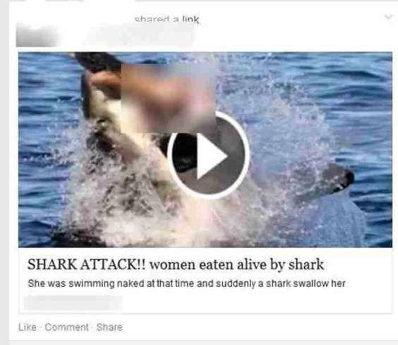 malware-woman-eaten-alive-shark-1